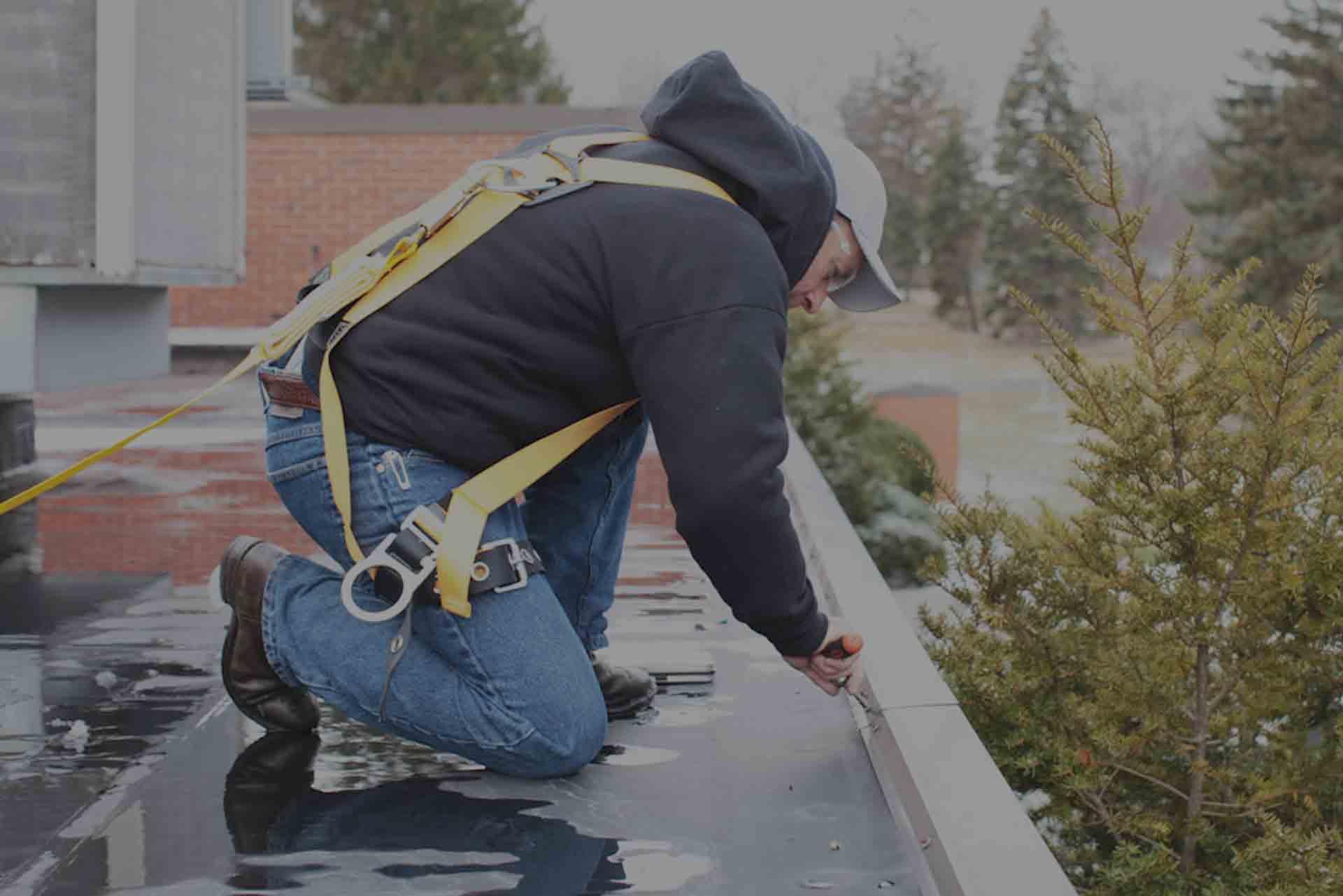 Roof Asset Management